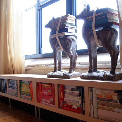 books strapped to deer